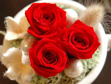 詳細2petite fleur(レッド):プリザーブドフラワー