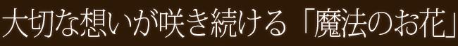 FAIRLY (エレガント)2:プリザーブドフラワー