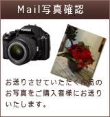 写真送付サービス